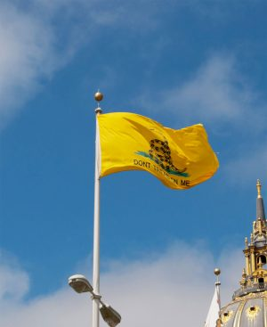 Gadsden flag nylon
