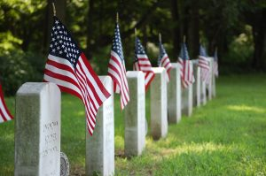 What Is Veterans Day? Here's What You Should Know