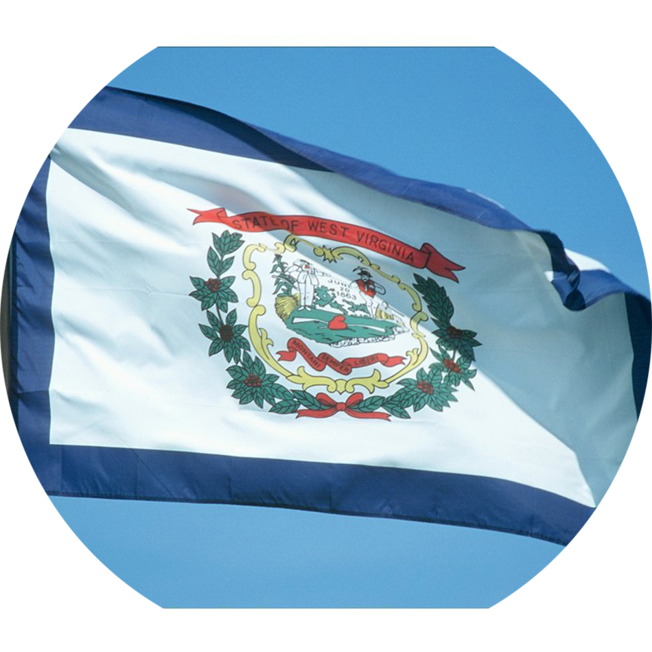 Nylon West Virginia State Flag Star Spangled Flags